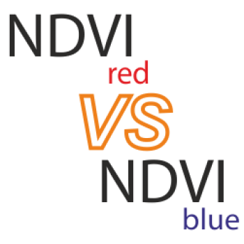 NDVI red VS Ndvi blue