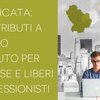 Basilicata: contributo a fondo perduto per le imprese ed i liberi professionisti
